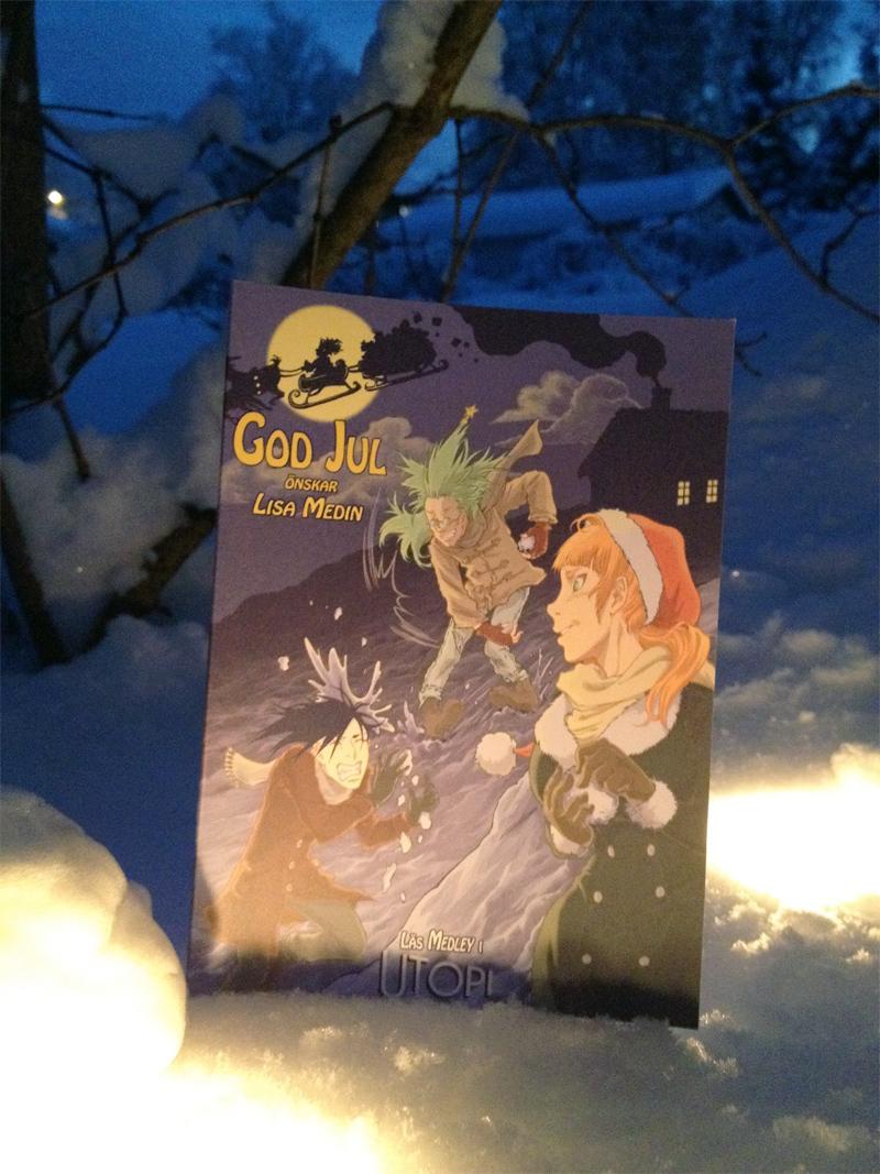 julkort2011-i-snö